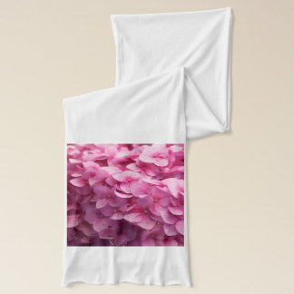 Pink Hydrangea bloom closeup flower photograph. Scarf