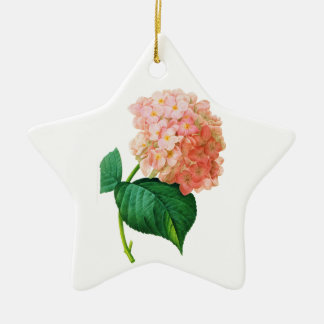 Pink Hydrangea by Pierre Joseph Redoute Ceramic Star Ornament