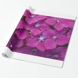 Pink Hydrangea Flowers Wrapping Paper
