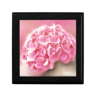 pink hydrangea in bloom gift box