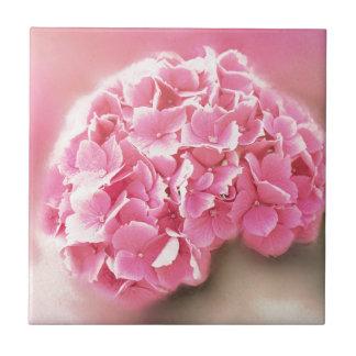 pink hydrangea in bloom tile
