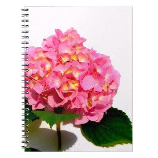 Pink Hydrangea Notebooks