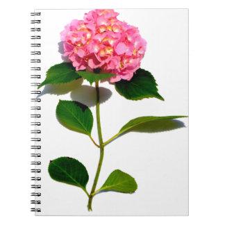 Pink Hydrangea Spiral Note Books