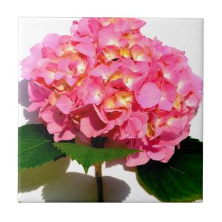 Pink Hydrangea Tile