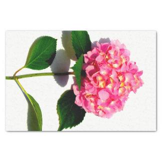 Pink Hydrangea Tissue Paper