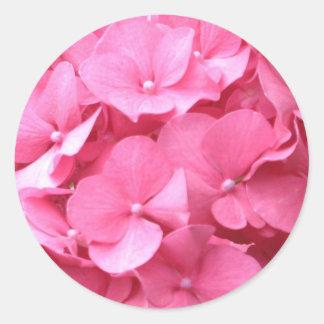 Pink Hydrangeas Classic Round Sticker