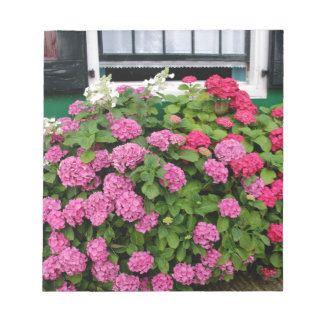 Pink hydrangeas, Holland Notepad