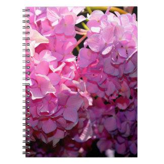 Pink hydrangeas notebooks