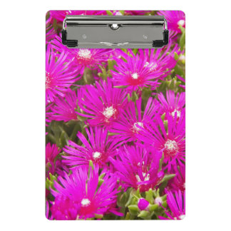 Pink Ice Plants Floral Mini Clipboard