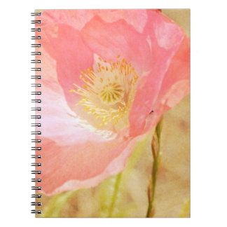 Pink Iceland Poppy Notebook