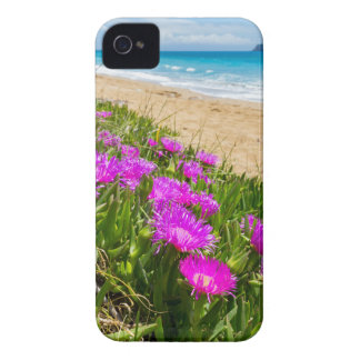 Pink icicle plants at coast in Greece iPhone 4 Case