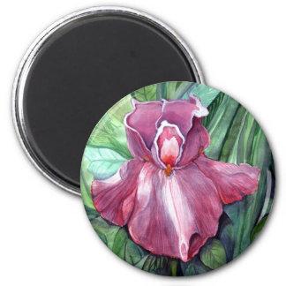 Pink Iris Magnet