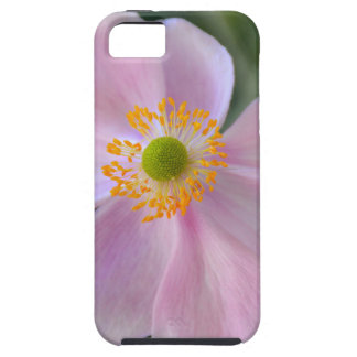 Pink japanese anemone flower case for the iPhone 5