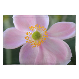 Pink japanese anemone flower placemat