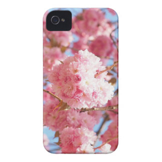 Pink Japanese Cherry Blossom iPhone 4 Covers