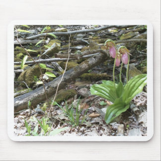 Pink lady slipper orchid mouse pad
