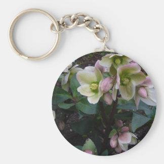 Pink Lenten Rose Basic Round Button Keychain