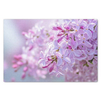 Pink lilac flowers tissue paper