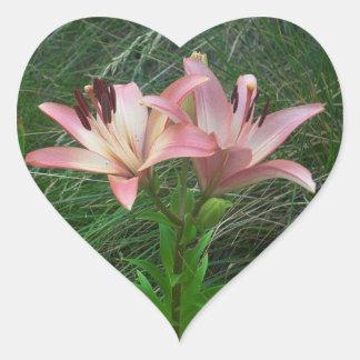 Pink Lilies w/Green Grass Heart Sticker | Flowers