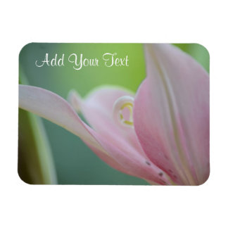 Pink Lily by Shirley Taylor Magnet