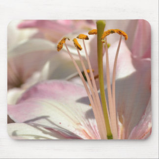 Pink Lily Macro Mouse Pads