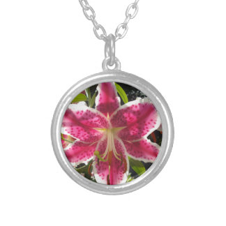 Pink  Lily Silver Plated Necklace
