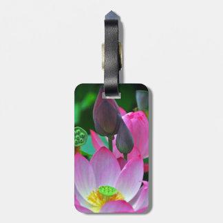 Pink Lotus Blossoms Luggage Tag