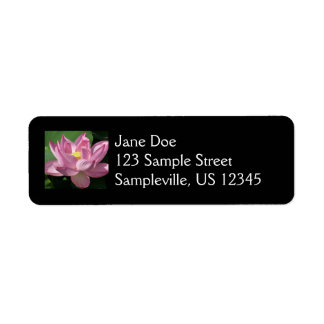 Pink Lotus Flower IV