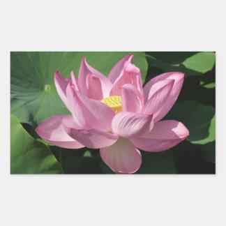 Pink Lotus Flower IV Sticker