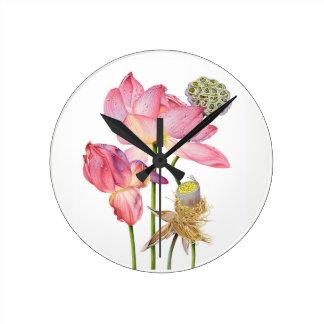 Pink Lotus Stem Wall Clock