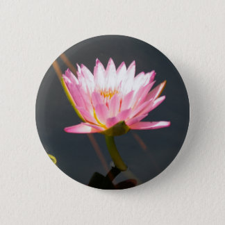 Pink Lotus Waterlily 2 Inch Round Button