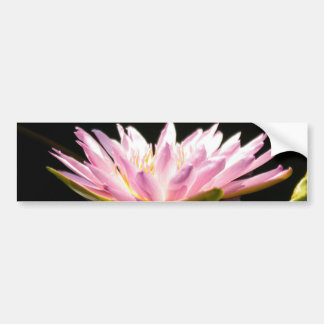 Pink Lotus Waterlily Bumper Sticker