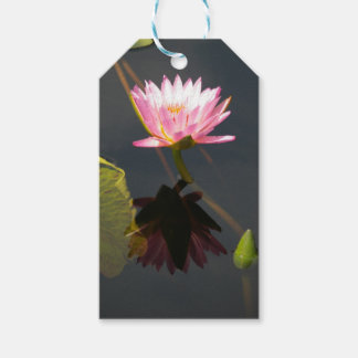 Pink Lotus Waterlily Gift Tags