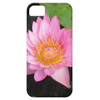 Pink Lotus Waterlily iPhone 5 Case