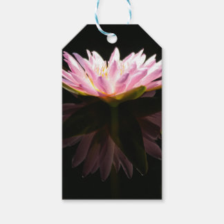 Pink Lotus Waterlily Pack Of Gift Tags