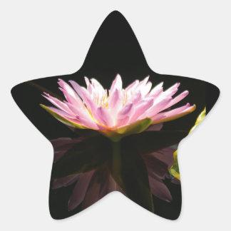 Pink Lotus Waterlily Star Sticker