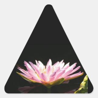 Pink Lotus Waterlily Triangle Sticker