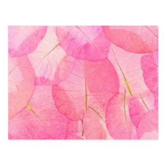 pink macro leaves postcard