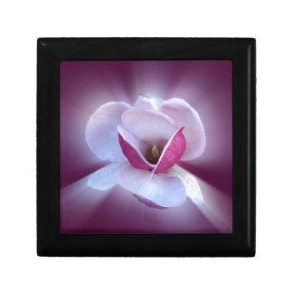 pink magnolia shades gift box
