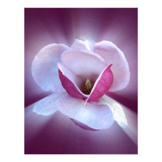 pink magnolia shades letterhead