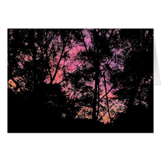 Pink Mimosa Skies Card