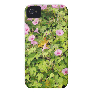 Pink Morning Glories Bush iPhone 4 Covers