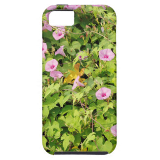Pink Morning Glories Bush iPhone 5 Cases