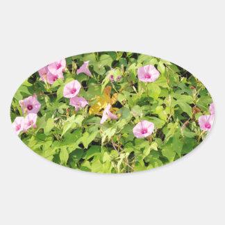 Pink Morning Glories Bush Oval Sticker