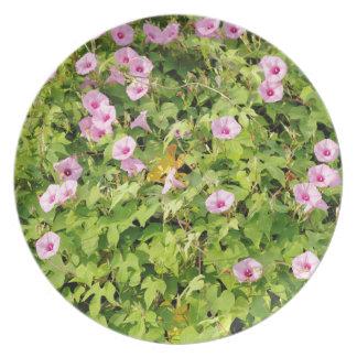 Pink Morning Glories Bush Plates