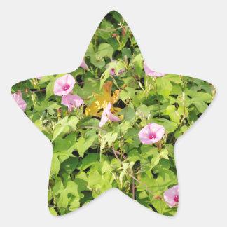 Pink Morning Glories Bush Star Sticker