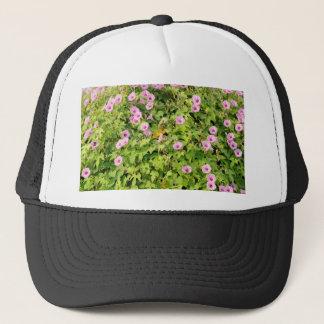 Pink Morning Glories Bush Trucker Hat
