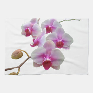 Pink Moth Orchids - Phalaenopsis Kitchen Towel