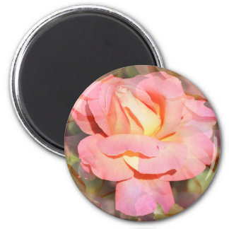Pink Multi Rose Collage 2 Inch Round Magnet
