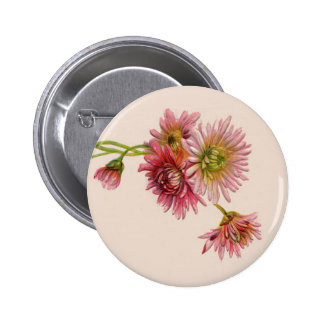 PINK MUMS by SHARON SHARPE 2 Inch Round Button